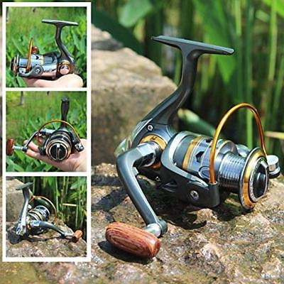 Spinning Fishing 11BB Inshore Rock Freshwater Saltwater