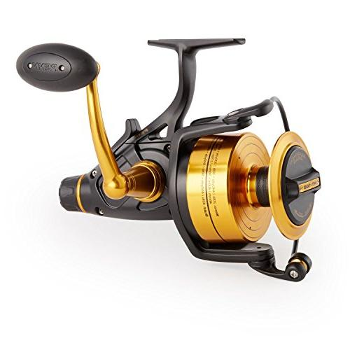 Penn 1259876 Spinning Fishing Reel,